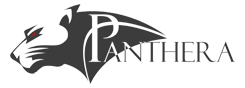 Panthera Technology Solutions Logo